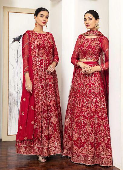 Senorita Embroidered Pakistani Anarkali/ Lehenga